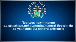 Порядок притягнення до кримінальної відповідальності боржників за ухилення від сплати аліментів
